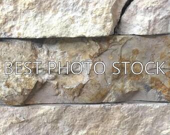 Big Beige Brick Background Photo Stock | Digital Image | Business Promotion