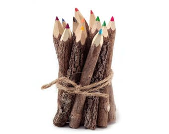Twig Pencils Colored Pencils Wood Pencils Color Pencils Rustic Pencils Gift Set Tree Branch Pencils Funny Pencils Woodland Baby Shower