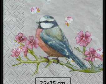paper towel chickadee on cherry blossom branch
