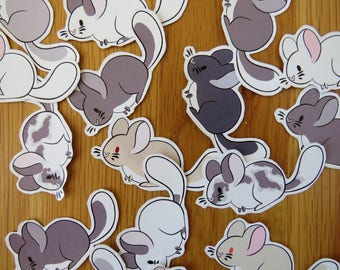 Assorted Mini Chinchilla Stickers