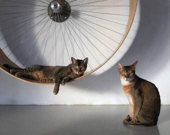 The wall cat wheel // the wall bike for cats by HolinDesign