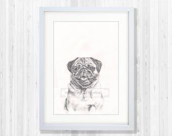 Tonal Pencil Pug Print with custom background