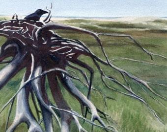Crow, Landscape PRINT