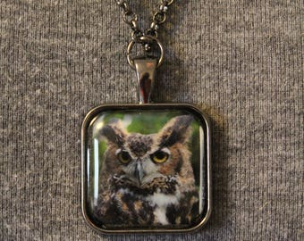 "Great Horned Owl ""Birdu"" Pendant Necklace"