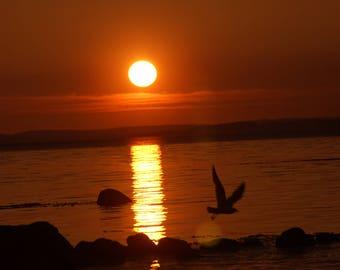 "Photo, photography, photo, photography, fine art print, photography, ""Sunset"""