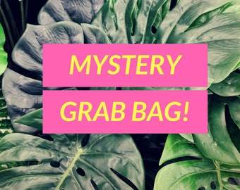 Mystery Box Surprise Grab Bag Self Gift Random Accessories Gift Box Blind Bag Cute Goodie Bag Gifts for Girls
