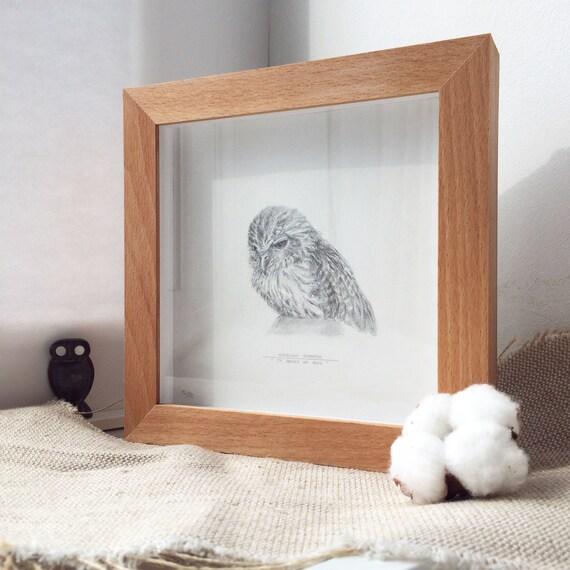 Común arte dibujo 42/50 el Papúa hawk owl original arte