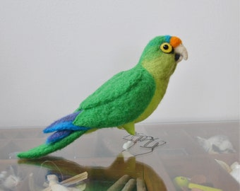 Mr. Orange Fronted Conure, needle felted bird fiber sculpture