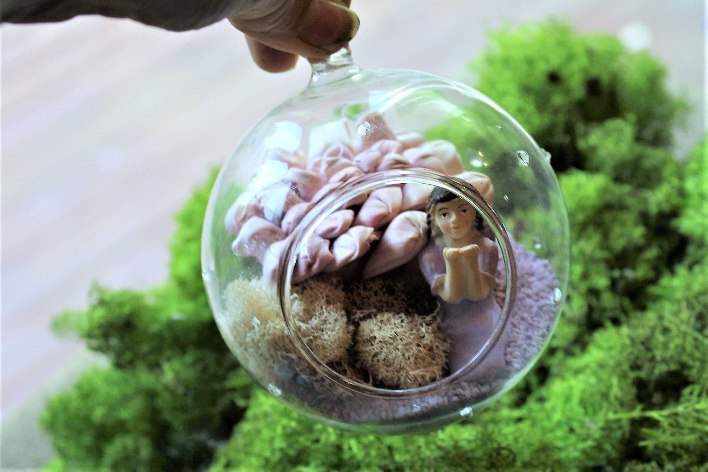 Fairy Lichen Glass Globe Hanging Glass Globe Terrarium Glass