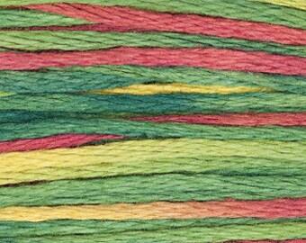 4105 Noel - Weeks Dye Works 6 Strand Floss