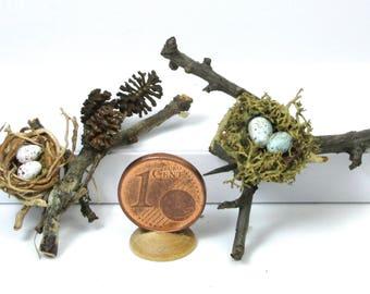 Tiny bird nests, with eggs, scale 1/12
