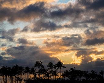 Hawaiian Sunset Silhouette Palm Trees - Aluminum Metal Print