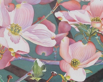 Pink Dogwood  - Floral Art Dogwood Print - Dogwood Art Print