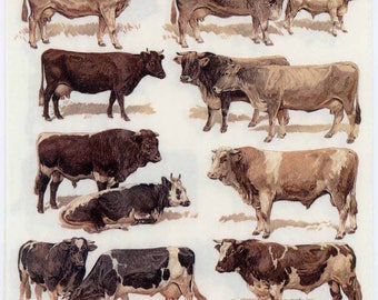 Decoupage Napkins | Cattle Breeds Bulls and Cows | Cattle Napkins | Cow Napkins | Bull Napkins| Farm Napkins | Paper Napkins for Decoupage