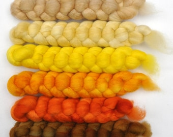 Hand painted roving -  Blue Faced Leicester (BFL) wool spinning fiber - 6.2 ounces - In the Sun