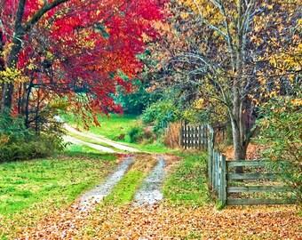 Autumn's Colors : archival quality fine art photography, horizontal format, landscape