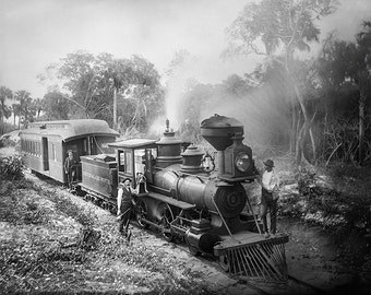 Train Route from Jupiter to Lake Worth, Florida 1800s, Black and White Photograph Print, Historical Wall Art for Home Decor
