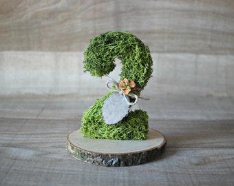 Moss number:  Woodland wedding table number - Moss Wedding Decorations - Forest Wedding decor - Fairy garden wedding - Outdoor wedding ideas