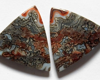27.65 Cts Natural Crazy Lace Agate (22.5mm X 22mm each) Loose Cabochon Match Pair