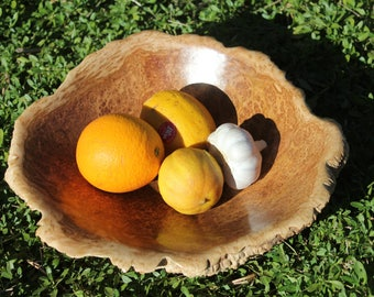 Australian Snap & Rattle Eucalyptus Burl Wood Bowl - Eco friendly