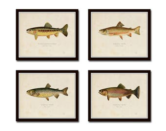 Vintage Trout Print Set No. 3, Natural History Art, Giclee, Art, Print Set, Cabin Art, Fish Print, Trout, Fly Fishing Art, Angler Art, Trout