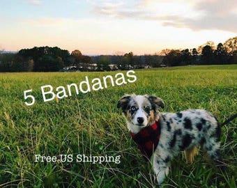 Dog Bandanas, set of 5, Free Shipping in the US, Snap close Bandana, Cute collar, Dog accessories, Dog bandana, cute dog bandanas