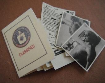 Miniature CIA File --- Roswell
