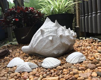 Concrete Cement Couch Shell Lawn and Garden Decor