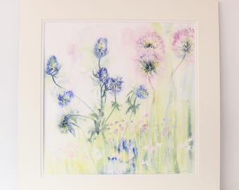 Thistles and Allium Watercolour Print