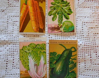 4 SEED PACKET LABELS Veggies Carrots Brussels Sprouts Swiss Chard Gourd, 1920s Vibrant Litho French Garden Art Unused, Cards Collage Journal
