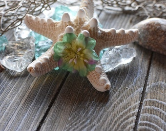 White starfish with flower hair clip