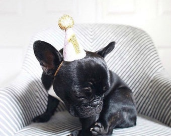 1st Birthday Pet Glitter Birthday Hat and Bow Tie set ||  Pet Party Hat || Animal Costume || Dog Cat Pig Party Photo Prop