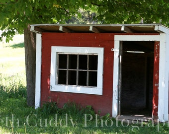 Red Shed, Rabbit Hutch, New England, Country, Farm, Rural MA,