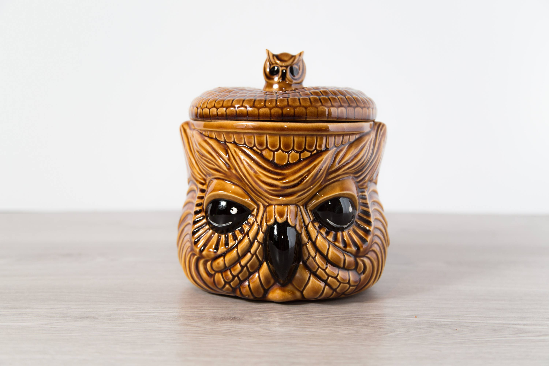 Vintage Owl Cookie Jar Hand Painted Ceramic Evil Owl Kitchen