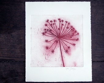 Flower in the wind Large Original Etching, Dandelion, red flower