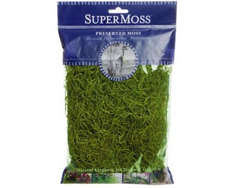 Spanish Moss Artificial Fake Grass Preserved Moss Preserved 110 grams bag