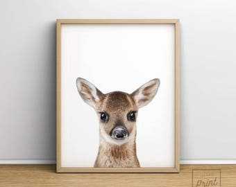 Deer print, Printable Art, Baby deer, Baby animal prints, Nursery wall art, Nursery decor, Woodland nursery, Animal Print, Fawn print