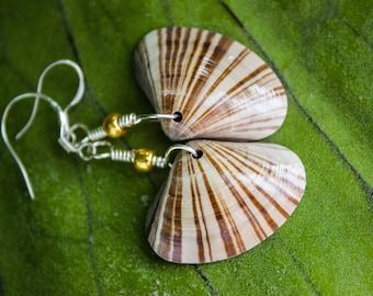 Stylish Striped Shell Beach Earrings