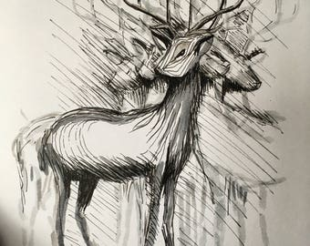 Stags, original sketch, picture