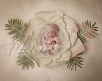baby digital backdrop - newborn photography -flower leaf petal  - digital prop