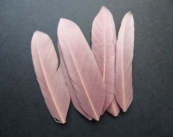 Pink Brown Feather, 7 c, set of 6 feathers