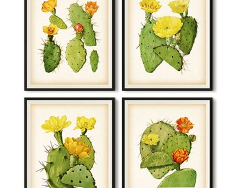 Vintage cactus print set, Printable botanical set, Set of 4 cactus prints, Cactus illustration, Cactus art, Antique wall art set, Download