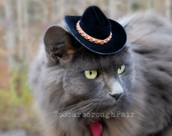 Cowboy Cat Hat - The Brick Cowboy Cat Ferret, Guinea Pig Small Dog Hat with Studded Suede band