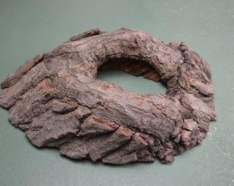 Oak Wood Knot Hole for Taxidermy Mount Base, Hollow Tree Limb   #491