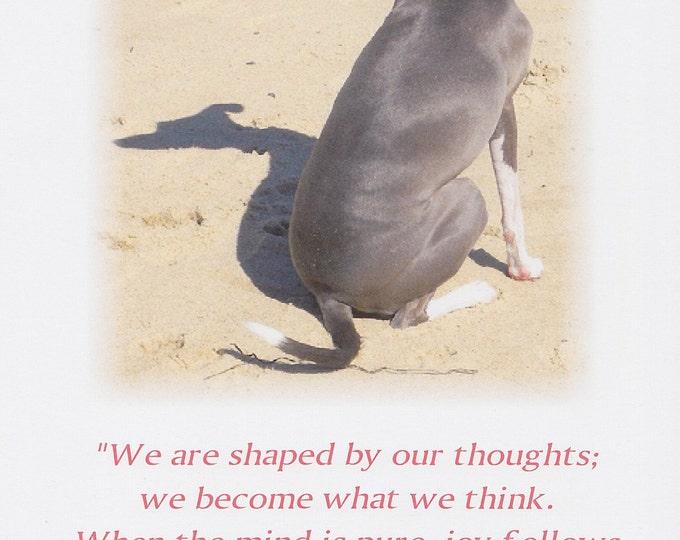 Buddha quote greeting card