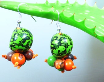 Earrings in seeds exotic bright colors