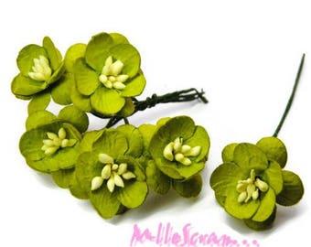 Set of 5 flowers green embellishment paper scrapbooking card making (ref.810) *.