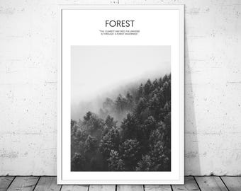 Forest Art Print, Forest Art, Nature Photo, Wilderness Print. Forest Print, Forest Printable, Black and White Forest, Nature Print