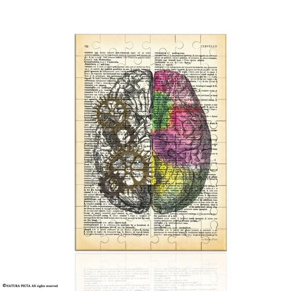 Left right brain Puzzle-anatomy jigsaw puzzle-brain wall