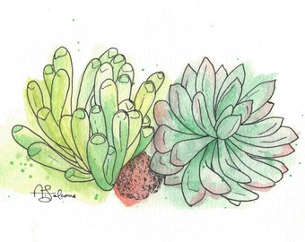 """Baby Toes Succulents 8x10"""" Matted Giclée Print"""
